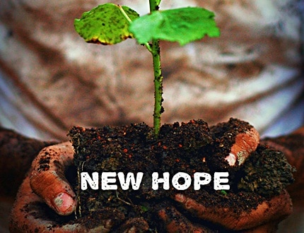 Planting trees for new hope