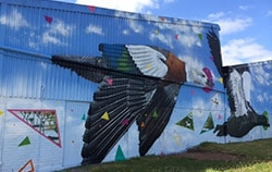 Two big Putangitangi ducks has been painted in the Alsco wall building