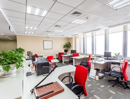 Clean and green office using natural light