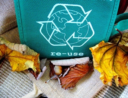 A green printed eco-bag and dried leaves on the side