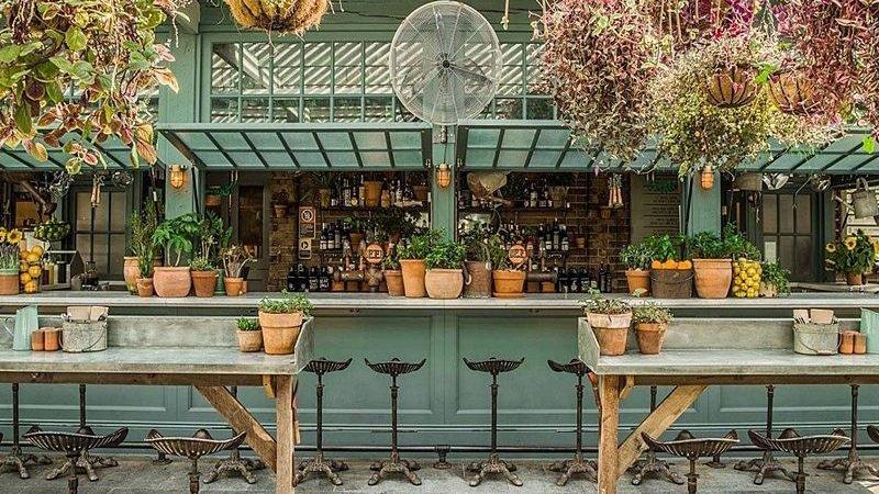 unique garden themed bar