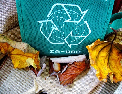 Re-use green initiative bag