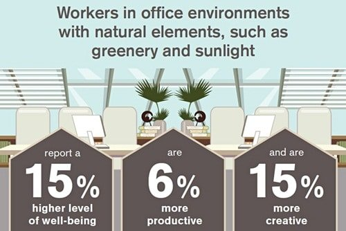 Natural elements inside a company are good for employees