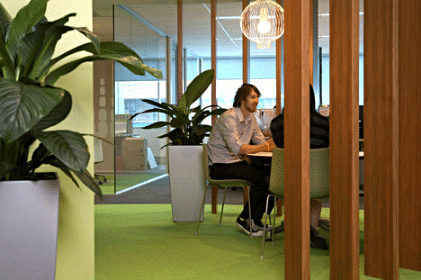 Office with green plants
